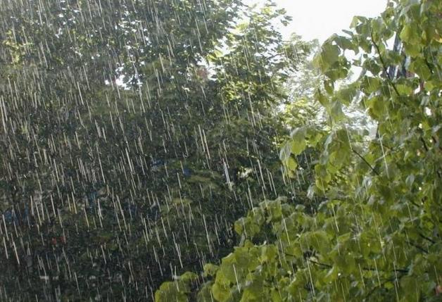 Погода на следующую неделю гагарин
