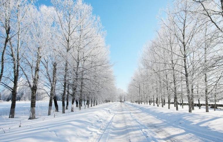 Прогноз погоды во владикавказе на 14 дней